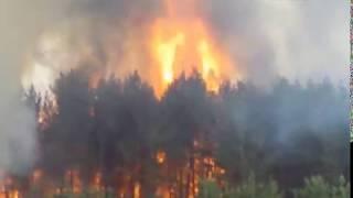 Особенности противопожарного режима