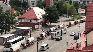 Конный караван из Германии сделал остановку на острове Канта в Калининграде