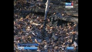 Вести Санкт-Петербург. Выпуск 11:25 от 23.10.2018