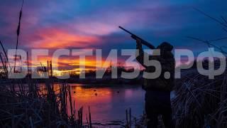 Названы сроки начала весеннего охотничьего сезона