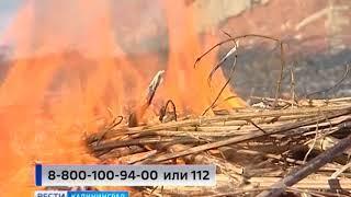 В Калининградской области объявлен пожароопасный сезон
