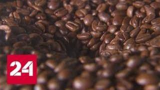 Больше явление, чем напиток: кофе прочно вписался в московскую жизнь - Россия 24