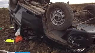 Экспертиза показала, что водитель был пьян  в ДТП в Илекском районе погибла оренбурженка
