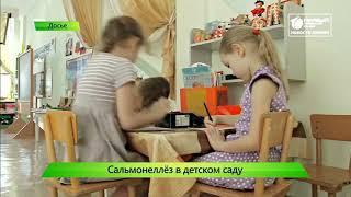 ИКГ Массовый сальмонеллез в детском саду #6