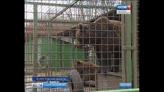 Вести Санкт-Петербург. Выпуск 20:45 от 31.10.2018