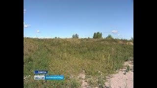 В Советске появилась зелёная поляна на месте свалки