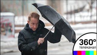МЧС предупредило о сильном ветре и дожде в московском регионе