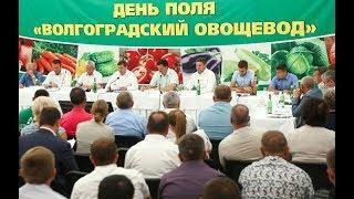Миллион тонн промышленного производства овощей – стратегическая задача для Волгоградской области