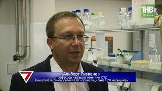 В ближайшее время может быть сделан прорыв в лечении рака. 7 дней | ТНВ