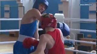 В Пензе выбирают лучшего боксера области