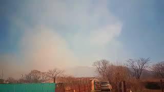 Сильный ветер раздувает пожар около с.Барабаш на юге Приморья