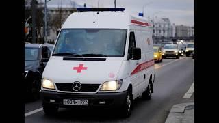 Власти назвали число потсрадавших от сильного ветра в Москве