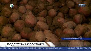 Спрос на картофельные семена в Коми вырос