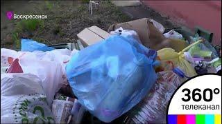 В Подмосковье идёт генеральная уборка мусора