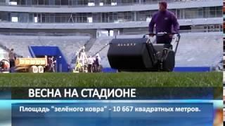 """Укладка газона на стадионе """"Самара Арена"""" завершится сегодня"""