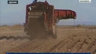 В Красноярске появится комплекс сооружений, где будут централизованно хранить сельхозпродукцию