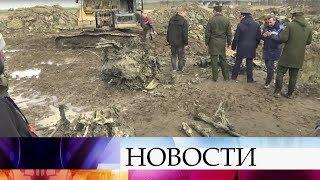 В Санкт-Петербурге предадут земле тело летчика, погибшего в сентябре 1941 года.