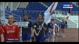 В Марий Эл съехались игроки в лапту из одиннадцати регионов России - Вести Марий Эл