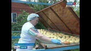 Производство адыгейского сыра набирает обороты  не только на предприятиях, но и в частных сыроварнях
