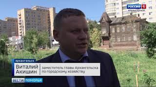 Кражу саженцев с Аллеи Славы в Архангельске городские власти назвали преступлением