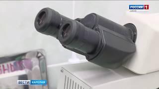 УФАС раскрыло картельные сговоры в сфере госзакупок