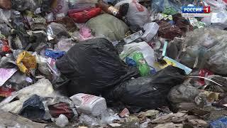 Кострома оказалась на грани мусорного коллапса