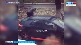 В центре Пятигорска подрались водители