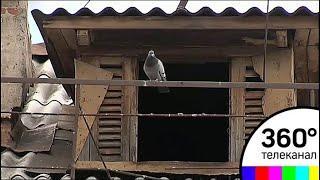 С ужасом ожидают майских ливней жители одного из домов в Серпухове