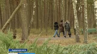 Куршской косе одобрили заявку о включении в реестр объектов культурного наследия РФ