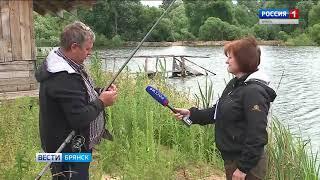 В Выгоничском озере снова будет жить рыба