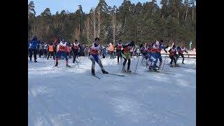 Жители Волжска стали участниками «Лыжни России»
