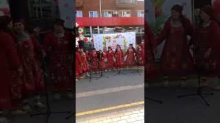 Музыкальная колонка рухнула на «Бабушку из Бураново» во время выступления в Ижевске.