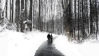 Югорчане: «Нас объединяют мороз и мошки!»