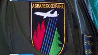 Авиалесоохрана отчиталась о выполнении госзадания по тушению пожаров в Красноярском крае