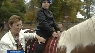 Лечение с помощью верховой езды: донские депутаты обсудили перспективы иппотерапии