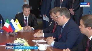 Европейские инвестиции в ставропольский бизнес