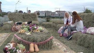 Как мог бы выглядеть парк Ак-Гель? В Махачкале прошёл цветочный фестиваль «Дагестан в миниатюре»