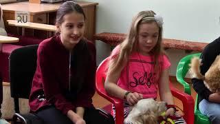 Курганские дети, мечтающие завести собаку, могут освоить искусство дрессировки