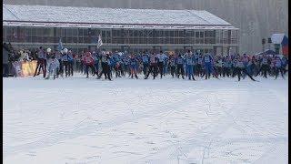 В гонке «Лыжня России» приняли участие более 14 тысяч югорчан