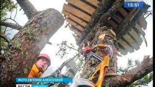Гнёзда для редких птиц построили в Тофаларском заказнике волонтеры