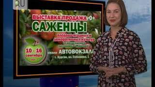 Прогноз погоды с Ксенией Аванесовой на 11 сентября