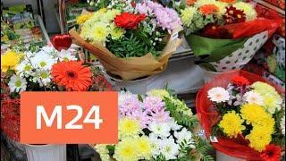 Родители школьников массово скупают цветы в столице - Москва 24