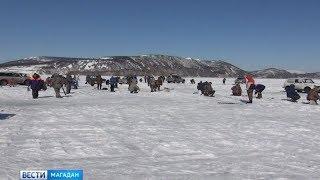 Треснувший лёд не пугает рыбаков, несмотря на явную угрозу, они выходят ловить