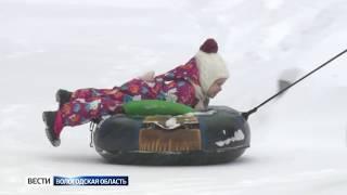 Грозит ли Вологодской области эпидемия ОРВИ?