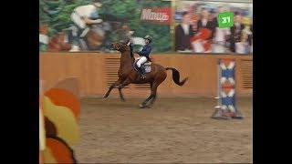 Челябинск принял открытый чемпионат области по конкуру