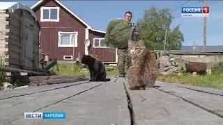 Обращение депутатов Заксобрания Карелии в Минсельхоз России