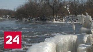 50 поселков под водой: дополнительная группировка спасателей отправится в Алтайский край - Россия 24