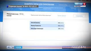 В Пензенской области за имя для аэропорта проголосовали свыше 84 тыс. человек