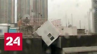 Сопротивление бесполезно: ураган-монстр принес ужасающие разрушения - Россия 24