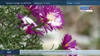 В Прикамье ожидается похолодание до -6 градусов